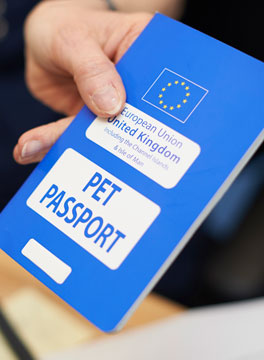 Pet passports and Brexit